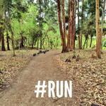 #CorrerMeHaEnsenado que hay que tener mucha Paciencia y ser constante. A seguir corriendo! #Loja http://t.co/xbumbC2sVv