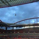 RT @zenit_spb: За 5 минут до матча — местная традиция: орел, символ «Бенфики», спускается в центр поля #БенфикаЗенит #UCL http://t.co/TPPG7EKy63