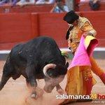 SIETE VECES VERÓNICA, DIJO MORANTE - Mi crónica de hoy en #Salamanca para @s24horas http://t.co/1w8FnIhv6z http://t.co/wUnuFjLWV1