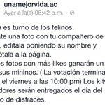 RT @UnaMejorVidaTab: Nuestros gatitos no se pueden quedar fuera.... Participa @TabascoHOY @JuliaAbogata @TabascoHoyTV @TabascoHOYRadio @ http://t.co/h6oH2uPh6F