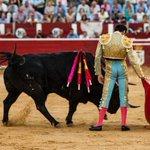 """RT @cultorocom: """"Un caballero, un enfermero y un guerrero"""", la genial FOTOGALERÍA de @cruzduende en Albacete http://t.co/WZYSZPtdMv http://t.co/BysGtqeS5d"""