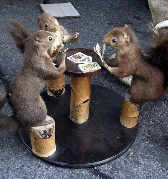 Who has the nuts? @TeamMizrachi http://t.co/Qgl6zGKRSU