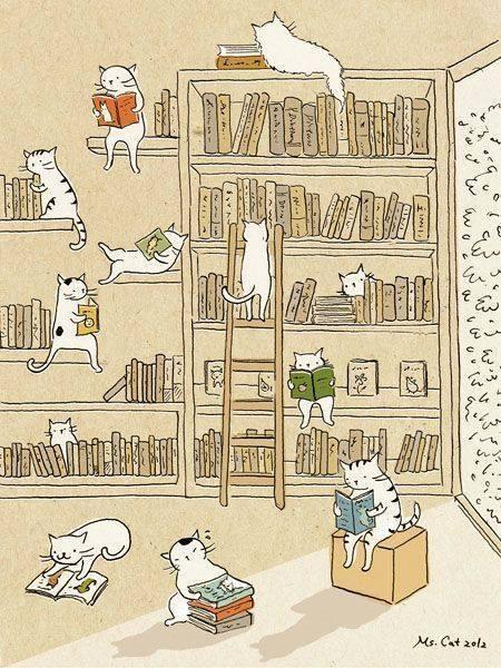 Always is a good time to read.  Cats & books* http://t.co/OgoA1cSZbN