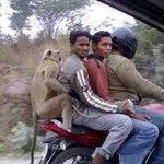 Hahaha!!! Mera Desh Mahaan.:) @salmanjan236: