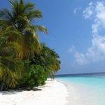 RT @JornalOGlobo: Maldivas: o paraíso do Estado Islâmico. http://t.co/THFRF67PnW http://t.co/D2lYBMtqkO