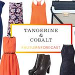 RT @NewLookFashion: Add a little tangerine & cobalt to your wardrobe this autumn >> http://t.co/YGcsXA6SpN http://t.co/VkW2eGCHv1