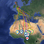 Congo #Cuckoo! Stanley becomes our 1st Cuckoo to reach the Congo this autumn: http://t.co/Q73yCOu6hO @BBCSpringwatch http://t.co/892RH1CpoE