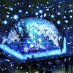 RT @fashionpressnet: 光が生み出す幻想的な泉、東急プラザ表参道原宿の屋上に冬のイルミネーション http://t.co/19Kk6DglG4 http://t.co/0vFLtUPIRW
