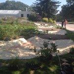 The Backyard Farmer garden is adding a rain chain feature! #unl24 #gardening #lnk http://t.co/JWXbK2X1XS