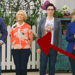 RT @BuzzFeedUK: Mary Berry's outfit today is INCREDIBLE #gbbo http://t.co/gjd3rIfi5Q
