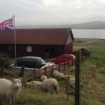 RT @WSJ: As Scotland votes on independence, Shetland Islands ponder their own fate: http://t.co/rgDuJiIQvf http://t.co/G7mBYE9Rbp