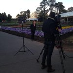 RT @DavidPolglase: Waking up with Today today. @TheTodayShow #Today9 #cbr #floriade http://t.co/IQy9h68Quz