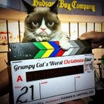 RT @lifetimetv: Who could play @RealGrumpyCat better than @evilhag in #GrumpyCats #WorstChristmasEver? http://http://t.co/2RhomKsHQ5