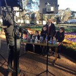 A great morning on set with Stevie Jacobs and @TheTodayShow for @floriadeaust #CBR http://t.co/p5IVLkqezK