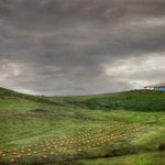 Does @NatArboretum have a bad angle? I dont think so. @visitcanberra #CBR #Canberra #humanbrochure http://t.co/N9RSN4wkyh