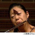 【奇跡の一枚】フルート演奏中、蝶が顔に舞い降りる http://t.co/HB5vfB9bIY 演奏者は蝶が顔にとまっても、動揺する様子もなく「フルートとピアノのためのソナチネ」を演奏し続けた。 http://t.co/PHJiw7I1F0