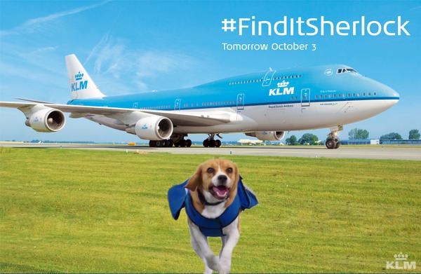 Tomorrow Sherlock will be taking over our Twitter. Tweet your stories using #FinditSherlock so he can help! http://t.co/4N1yPlB4KO