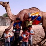 RT @la_iguanatv: Vea estas fotos en Gaza y siéntase orgulloso de ser venezolano http://t.co/FxJ2adT9Di http://t.co/qVDONWcVCf #Venezuela *