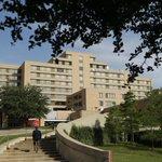 RT @lemondefr: Un cas dEbola diagnostiqué pour la première fois hors dAfrique, à Dallas, aux Etats-Unis. http://t.co/GgXuRQW2hu http://t.co/2tXevK0NKh