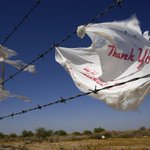 RT @HenleMark: California becomes first state to ban plastic bags http://t.co/xVG2iDvqxq via @azcentral http://t.co/qtuCmL78R1