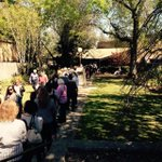 The 100m long line waiting to see Ms Gillard at Camden. Many older voters. Currently a LNP seat...currently. #auspol http://t.co/9KTTj3nJLP