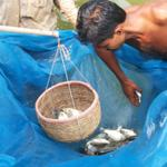 Were studying #Bangladeshs #aquaculture market to identify how #fairvalue practices can enable #fishing communities http://t.co/glVEhxOTUY