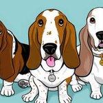 RT @24HorasTVN: ¿De dónde es tu mascota?: averigua cuál es el origen de tu perro → http://t.co/Lo9nTWKRmv http://t.co/8fl5uiP0aO
