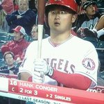 RT @sportspickle: The Funniest Photos from the MLB Regular Season: http://t.co/ftAq7Puhdv