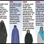 BURQA: a loose garment covering the body and face, with a grill covering the eyes. NIQAB: leaves the eyes visible. http://t.co/mrVYHy9WrX