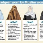RT @RitaPanahi: For those confused about Muslim headgear. Burqa & niqab already banned in France. http://t.co/CCvbrQuAMH http://t.co/IqzWD8uInD