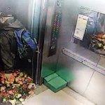 RT @HuffPostKorea: 꽃바구니 들고왔다 홧김에 일가족 살해 http://t.co/SX0FVJ2xRA http://t.co/eAeNIdtjs3