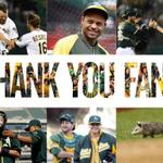 RT @Athletics: Thank you #GreenCollar fans for an amazing season. Best fans in baseball. http://t.co/P703n2GIZK