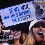 Looks like Ned Yost doesnt hate puppies after all! #TakeTheCrown #BeRoyal #Yosted http://t.co/pgfQeQ8dS8