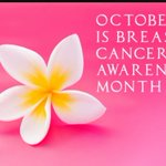 Today marks the beginning of Breast Cancer Awareness Month http://t.co/BiDBpGZYDh