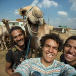 This camel from Giza is really enjoying the selfie. #Egypt http://t.co/42ploeNevP