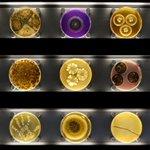"""EW. """"@g1: Inaugurado em Amsterdã primeiro zoológico de micróbios do mundo http://t.co/fmQA8BwjAF #G1 http://t.co/YoQH53ugxk"""""""