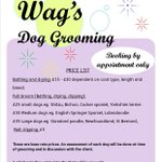 RT @WigfieldFarm: 20% off all bookings made in October for our Dog Grooming Service Email sonia.jones@barnsley.ac.uk #Barnsleyisbrill http://t.co/8Hkbq5MY3b