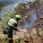 RT @GeneralPalomino: Valoro el trabajo de los Policías que han estado ayudando a controlar incendio en Villa de Leyva. Seguimos atentos. http://t.co/EiQjfaZCRK