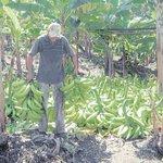 RT @MeridianoWeb: Córdoba quiere transformar el comercio del plátano http://t.co/MZdix53Uxn http://t.co/KexHbOeW9X
