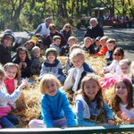 5 great hay rides in the #Chicago area for families. http://t.co/WqBPAMwggR http://t.co/iQRfkYB3Y8