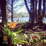 Loving the atmosphere on Waikato campus this week! RT if you love our beautiful campus #waitalk #lovethetron http://t.co/OIDaOhkuOX
