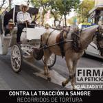 RT @IA_Mexico: FIRMA Contra la Tracción a Sangre en #Jalisco: http://t.co/SW66nS5l37 @AytoGDL #NoMasCalandrias #TurismoSinViolencia http://t.co/OCbjxng4gv