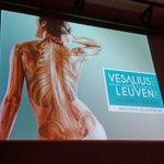 Aftrap Vesalius tentoonstelling en activiteiten @stadleuven. Grondlegger geneeskunde verdient groots eerbetoon! http://t.co/MPkuNB1mqf