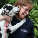Attention #Vancouver, our @westvanbcspca is recruiting new volunteers! Apply today at http://t.co/qph2PlMnsc http://t.co/z0UAZBP6IY