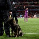 Felipe Melo, Emirateste maç sonu taraftarları selamlıyor... http://t.co/Dfxixc791S