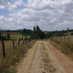 Carabineros detuvo a trabajador que atropelló y dio muerte a comunero mapuche http://t.co/3q8G2cgZuU http://t.co/eqZbSkm3Dx