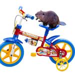 Alecsandro e sua bicicleta http://t.co/49yCn9Fkjf