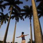 RT @JornalOGlobo: Ambientalistas alertam que slackline pode causar enfraquecimento e morte de árvores. http://t.co/UBgD1rm7NO http://t.co/U3oo7yFYF8