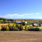 Fall colours are beautiful in & around @PTBO_Canada - this shot taken near Rice Lake on Regional Rd 2 #autumn #photo http://t.co/yVjazKgcp0