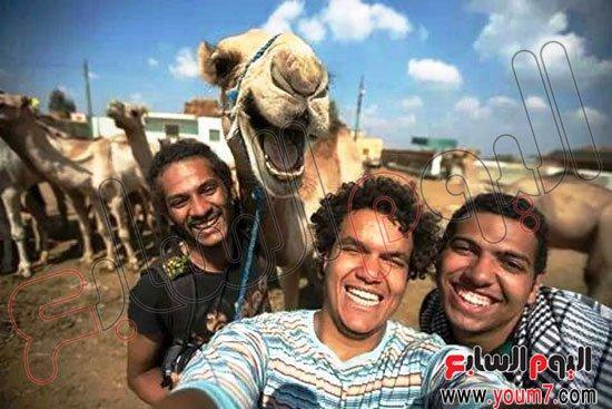 """أطرف """"سيلفى"""".. جمل يشارك 3 مصورين الضحك بسوق """"برقاش"""" فى الجيزة! http://t.co/skfkl1idYs"""